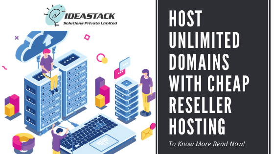 Host Unlimited Domains With Cheap Reseller Hosting