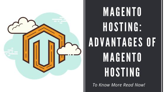 Magento Hosting :Advantages Of Magento Hosting.