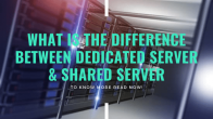What Is The Difference Between Dedicated Server & Shared Server?