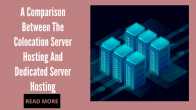 A Comparison Between The Collocation Server Hosting And Dedicated Server Hosting