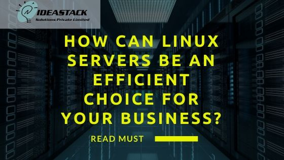 How Can Linux Servers Be An Efficient Choice For Your Business?