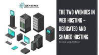 The Two Avenues In Web Hosting - Dedicated And Shared Hosting
