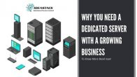 Major Reasons Why Dedicated Server Is Best For Your Growing Business. Know How to buy a cheap dedicated server in India