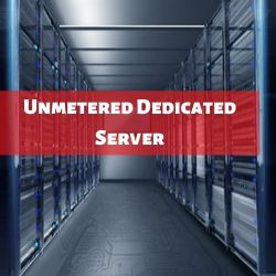 Benefits of Unmetered Dedicated Server
